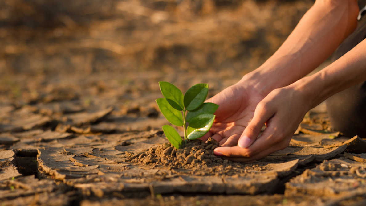 Vpliv podnebnih sprememb na zdravje ljudi